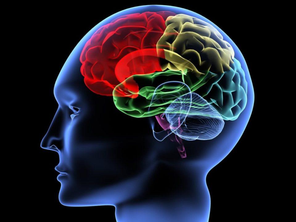 مدیریت هوش ذهنی