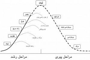 چرخه عمر شازمان